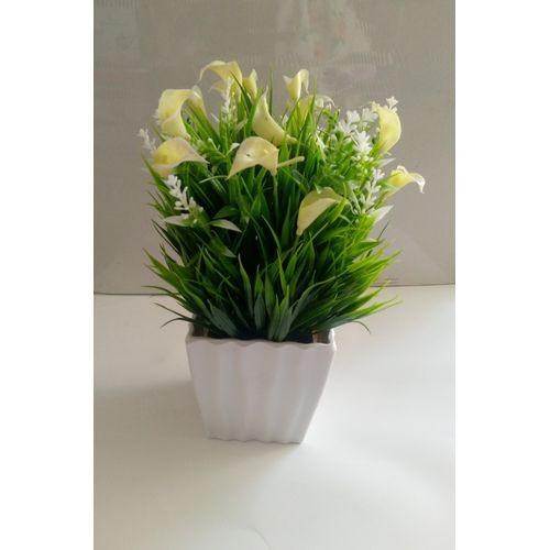 PURPLE AND GREEN Flower In A WHITE BOWL