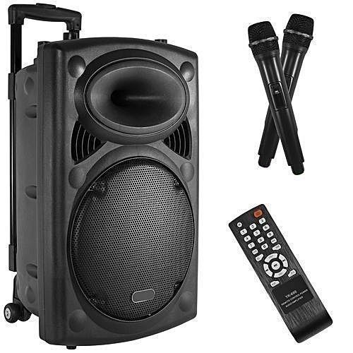 "12"" Public Address System- Big Speaker With Bluetooth + 2 Wireless MIC + Remote Control + Wheels"
