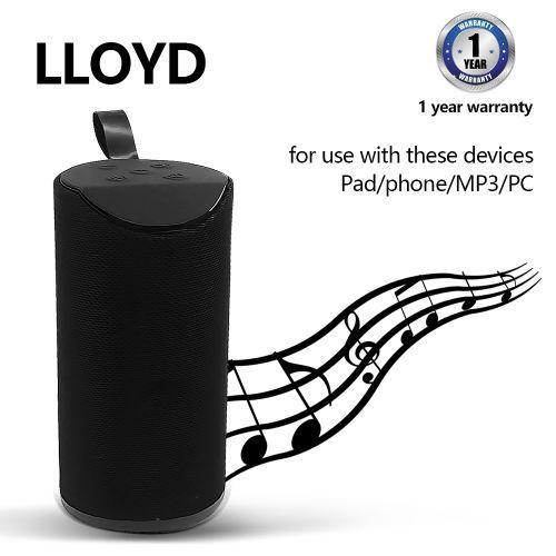 LLoyd T113 Mini Speaker Black