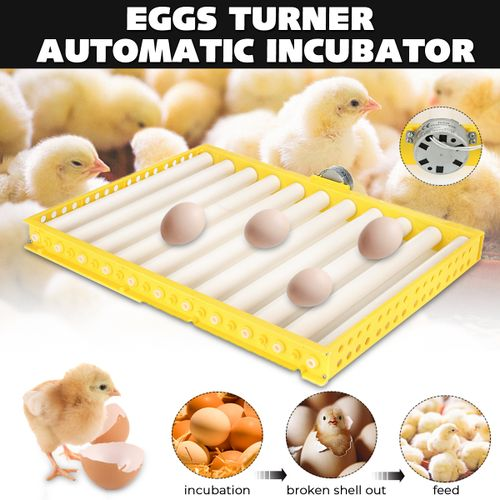 60 Egg Incubator Automatic Poultry Chicken Quail Hatching Machines