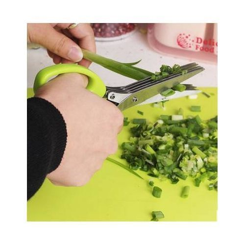 5 Blade Professional Multipurpose Kitchen Herb Scissors