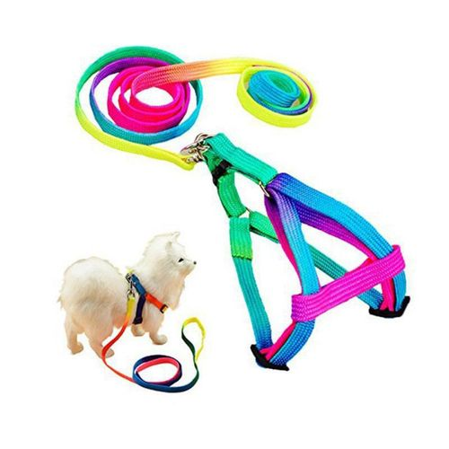 High Quality Adjustable Nylon Puppy Colorful Harnesses