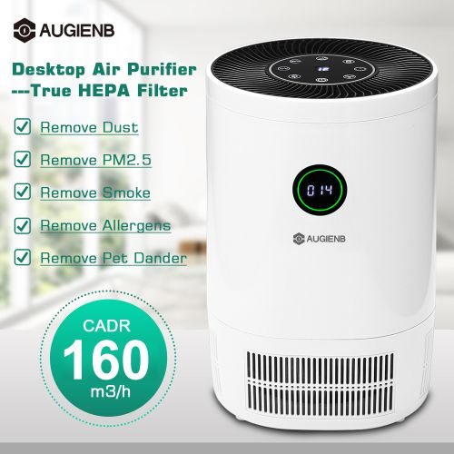 AUGIENB Air Purifier Cleaner W/ True HEPA Filter Remove Dust Odor Mold