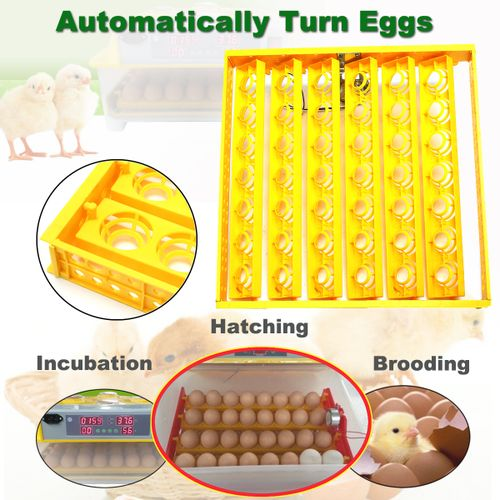220-240V 42 Egg Chicken Quail Poultry Turner Tray +a PCB Turning Motor