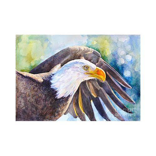 Eagle Wings Artwork