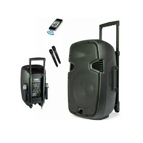 """8"""" Rechargeable Public Address System/2 Microphones 800watts"""