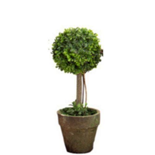Artificial Plastic Trees In Pots Plants Potted Decor Garden Yard Outdoor Indoor 21cm Round
