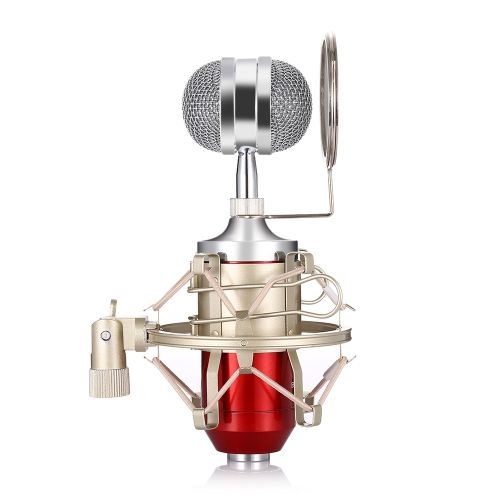 LEIHAO BM - 8000 Professional Sound Studio Recording Condenser Microphone With 3.5mm Plug Stand Holder-RED