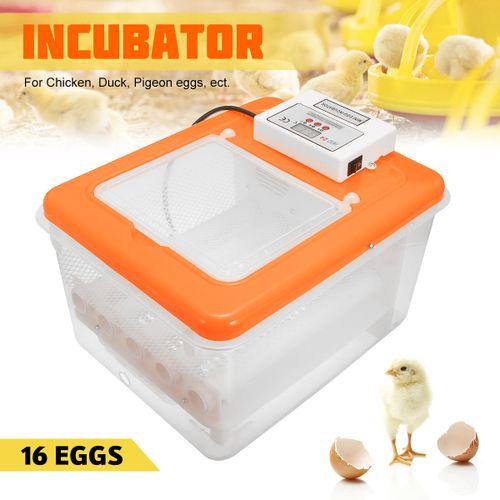 16 Eggs Automatic Turning Incubator Hatcher Digital Clear Temperature Control