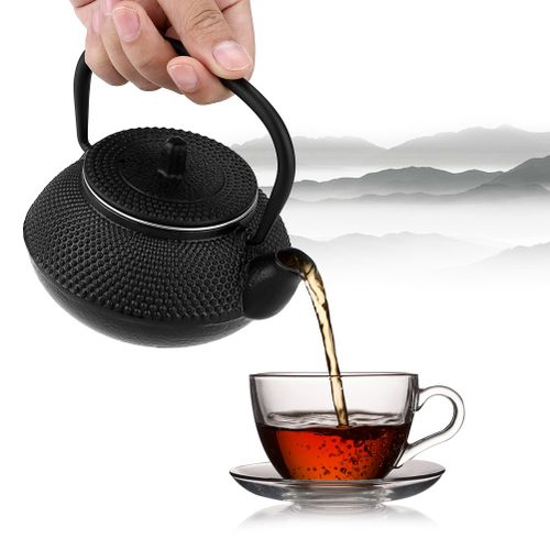 300ml Japanese Style Cast Iron Kettle Teapot + Removable Infuser/Strainer Tea Pot