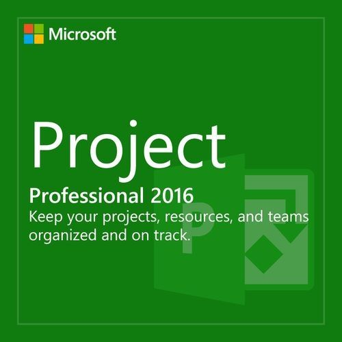 Project 2016 Professional PC - Download Version