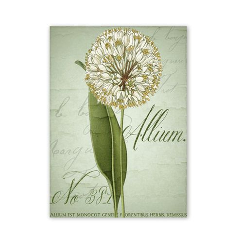 Fistular Onion Flower Wall Art Painting Printed Picture Home Office Decor