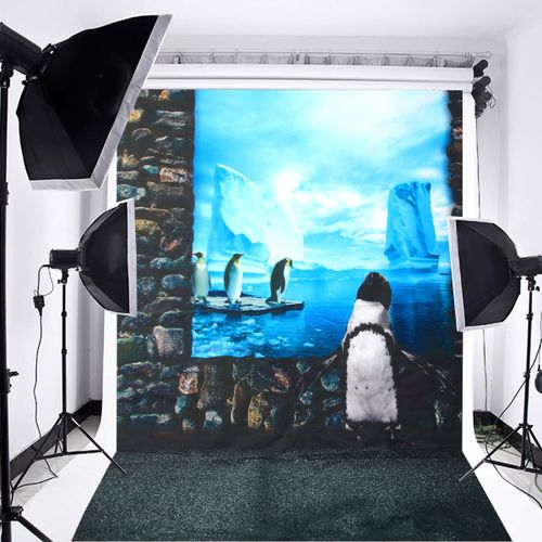 3D Photography Backdrop Background