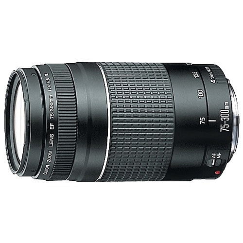 Canon 75-300mm Camera Lens