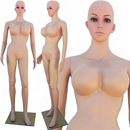 Generic Plastic Female Full Size Busty Mannequin | Jumia NG