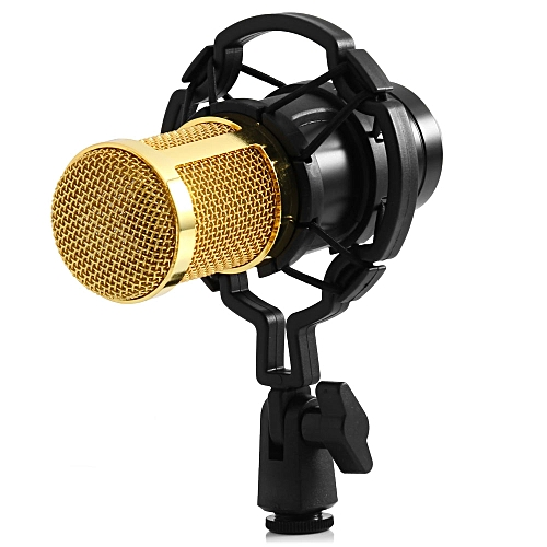 Condenser Sound Recording Microphone - Black